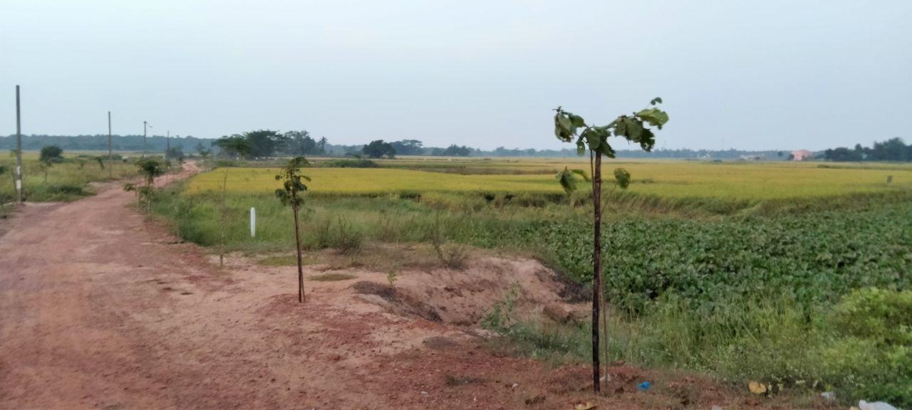 Residential Land / Plot