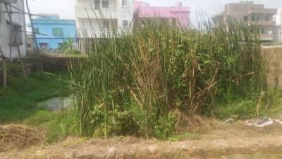 1780 sq. ft. Residential Land / Plot for Sale in Pahala, Bhubaneswar