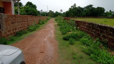 6000 sq. ft. Residential Land / Plot for Sale in Trisulia, Cuttack