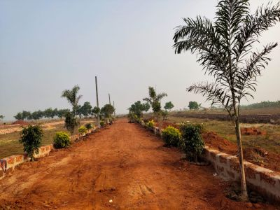 1500 sq. ft. Residential Land / Plot for Sale in Sundarpada, Bhubaneswar