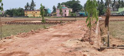 1250 sq. ft. Residential Land / Plot for Sale in PHULANAKHARA, Bhubaneswar