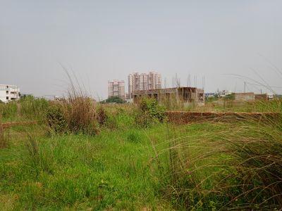 1750 sq. ft. Residential Land / Plot for Sale in Pahala, Bhubaneswar