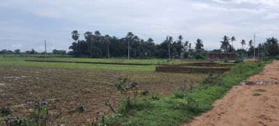 1300 sq. ft. Agricultural Land for Sale in Balianta, Bhubaneswar