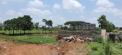1500 sq. ft. Residential Land / Plot for Sale in Patrapada, Bhubaneswar