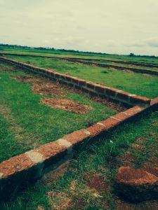 1200 sq. ft. Residential Land / Plot for Sale in Janla, Bhubaneswar