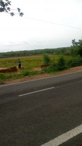 4000 sq. ft. Commercial Land / Plot for Sale in Megha, Cuttack
