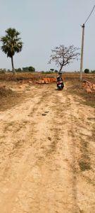 1200 sq. ft. Residential Land / Plot for Sale in Balianta, Bhubaneswar