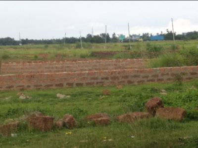 1200 sq. ft. Residential Land / Plot for Sale in Patia, Bhubaneswar