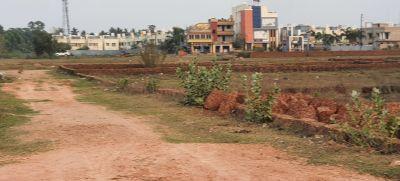 1200 sq. ft. Agricultural Land for Sale in Patia, Raghunathpur, Bhubaneswar