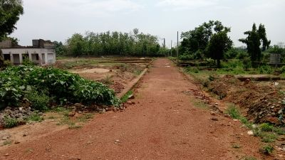 1500 sq. ft. Residential Land / Plot for Sale in Trisulia, Cuttack